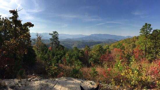 Townsend, TN: Majestic view