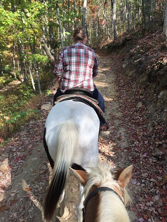 Townsend, TN: Relaxed ride on mountain trails