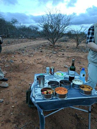 Naledi Bushcamp and Enkoveni Camp: IMG_20161111_181758_large.jpg