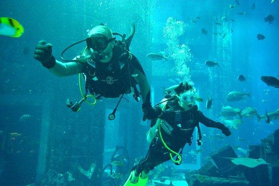 Atlantis Dive Centre