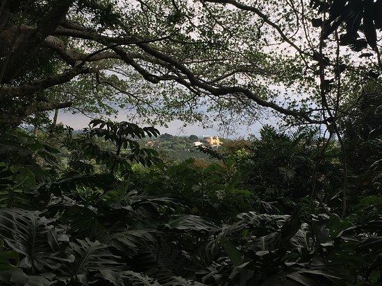 Finca Rosa Blanca Coffee Plantation & Inn: photo4.jpg