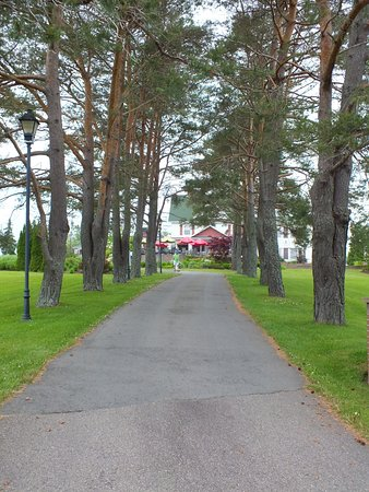 Auberge Gisele's Country Inn: Long driveway to beautiful spot hidden in the trees.