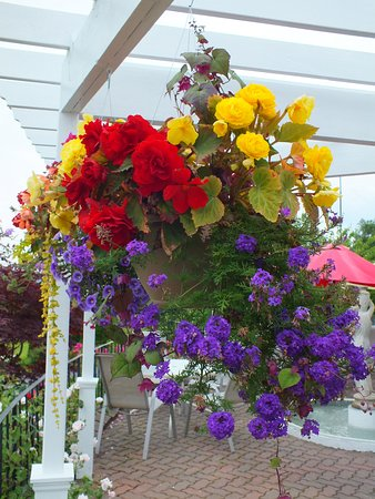 Auberge Gisele's Country Inn: Beautiful hanging baskets