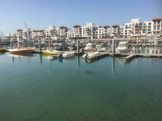 Port de Plaisance Marina Agadir