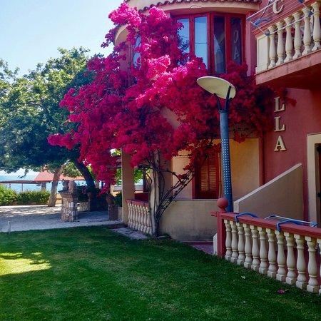 Kato Achaia, Greece: Garden view..