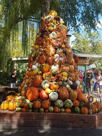 Dollywood: what you might see at Dollywod if you visit in October/November-fall decorations