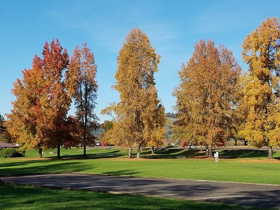 Roseburg, OR: The park in Fall