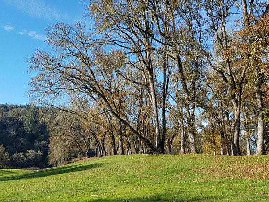 Roseburg, OR: Great open spaces