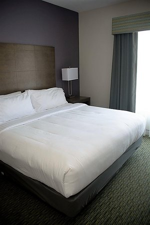 Holiday Inn Express Hotel & Suites Port Aransas / Beach Area : Guest Room