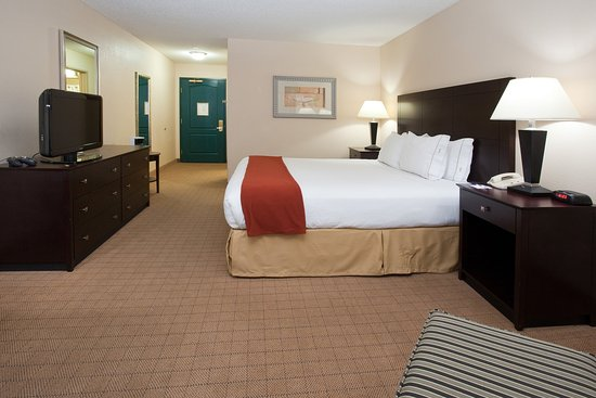 Энглвуд, Колорадо: Holiday Inn Express Denter Tech Center King Bed Guest Room