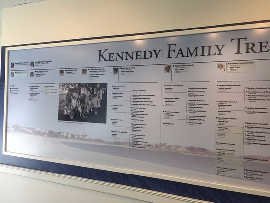 The kennedy family tree