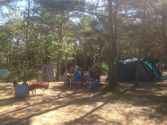 Artignosc-sur-Verdon, France : Des grands espaces naturels pour le camping comme on l'entend!