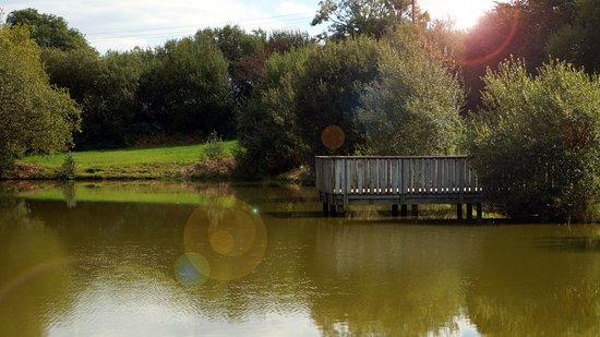 Landscape - Picture of Pencnwc Holiday Park, Cross Inn - Tripadvisor