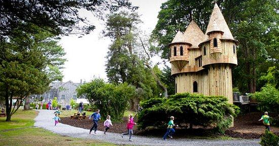 Minnock's Bed & Breakfast: Birr Castle Tree House