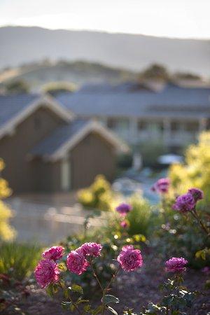 Menlo Park, CA: Exterior View