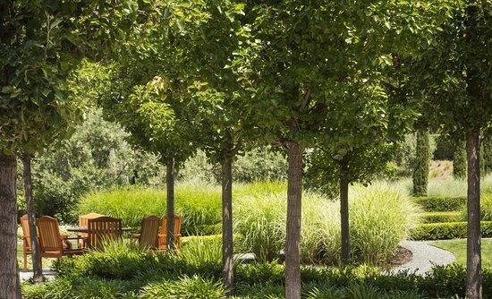 เมนโลพาร์ก, แคลิฟอร์เนีย: Cypress Garden