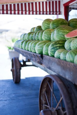 Menlo Park, Kaliforniya: Farm to Table - Watermelon