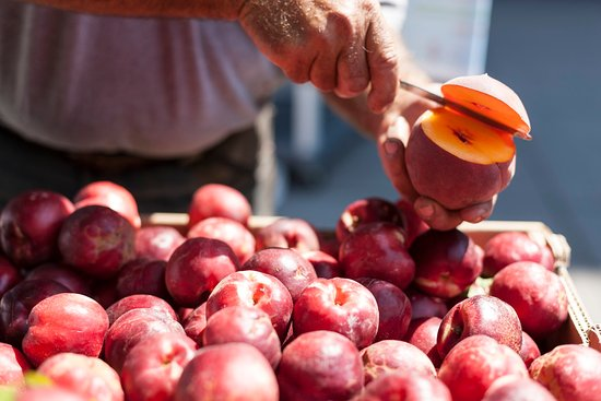 Menlo Park, Kaliforniya: Farm to Table - Peaches