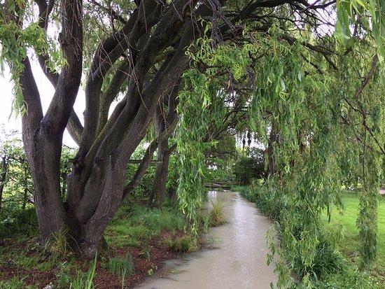 Renwick, Yeni Zelanda: At the Forrest winery