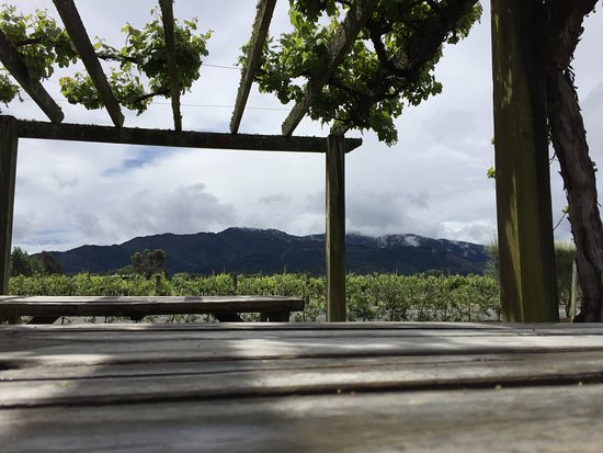 Renwick, Yeni Zelanda: At the Wairau River winery