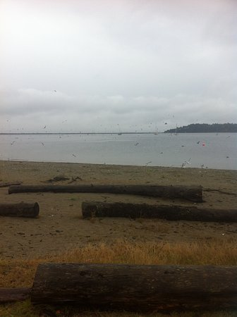 Clallam Bay, WA: Water views on the way