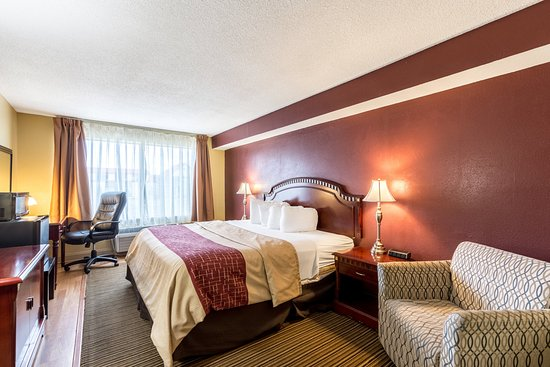Red Roof Inn & Suites Muskegon Heights: Superior King