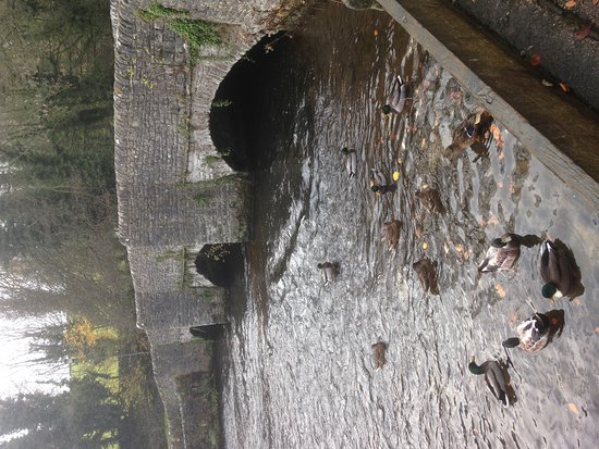 Ashford-in-the-Water-billede