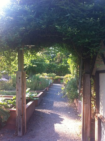 Coupeville, Waszyngton: Garden on premises