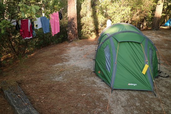 Camping Club d'Arcachon : Our site