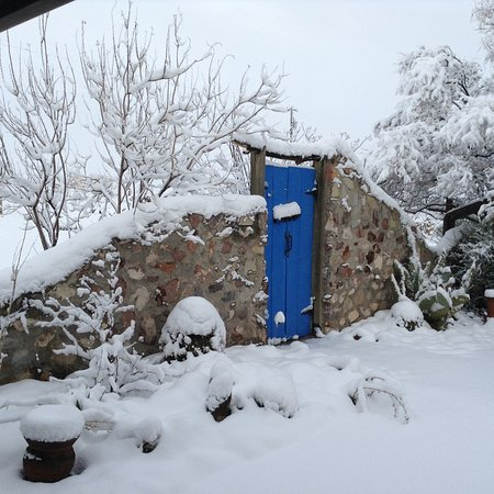 Santa Teresa, NM: Christmas 2015 - snow!!!  So atypical for this area.