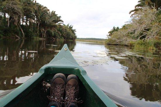 Maputaland Coastal Forest Reserve, Sudáfrica: Cano tour