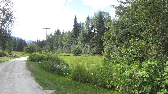 Hillside Lodge and Chalets Photo