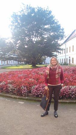 Decin, Czech Republic: No pátio central do castelo