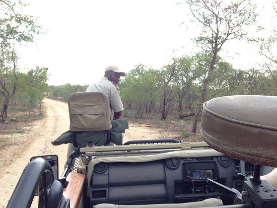 Kapama Southern Camp: Advance, our tracker