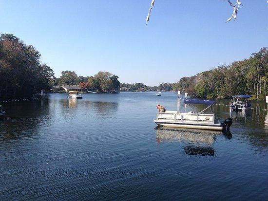 Homosassa Springs, FL: photo7.jpg