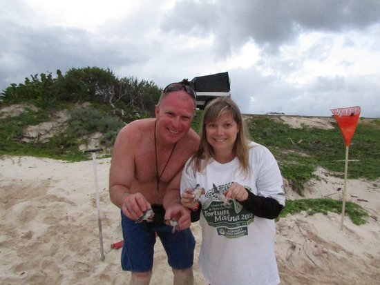 Hotel Cozumel and Resort: best part of our trip. participating in the turtle rescue program