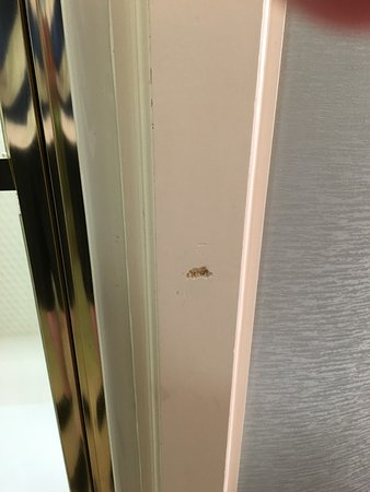 Doubletree Hotel Atlanta/Alpharetta-Windward: this is for the door to lock, nothing but wall