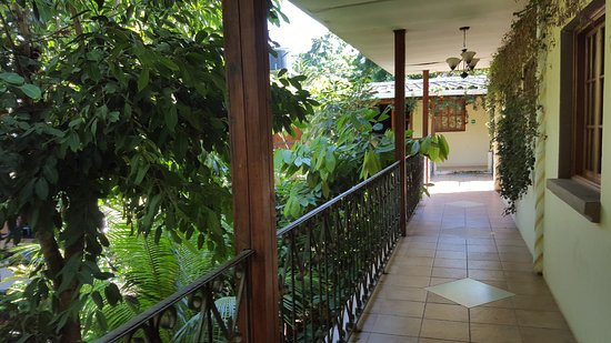Managua Hills Bed and Breakfast: view outside our second floor room