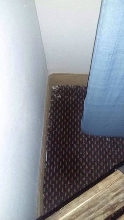Ramada Commerce/Los Angeles Area: dirty carpet room 101 Ramada