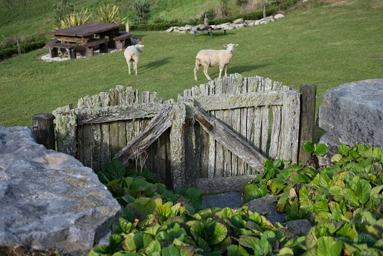 Te Kuiti, Nova Zelândia: Park-like grounds