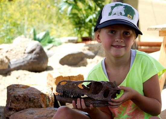 Wolcott, CO: girls and boys love dinosaurs!