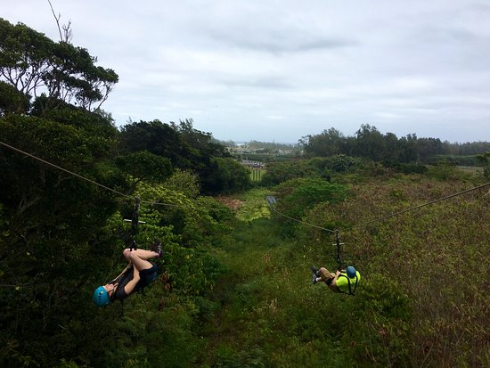 Kahuku, HI: Second to last run so we flipped upside down- well, attempted!