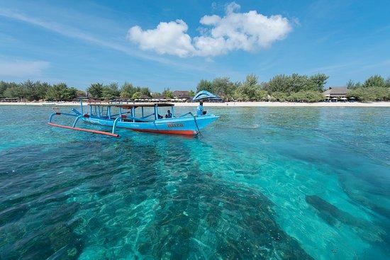 Villa Almarik Resort Lombok: Diving Activities