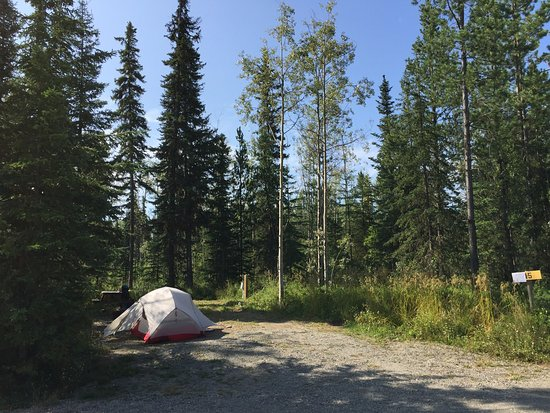 Prince George, Canada: Tent camping friendly