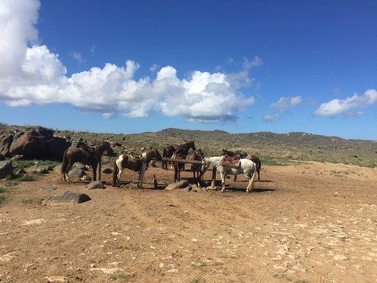 Paradera, Aruba: photo1.jpg