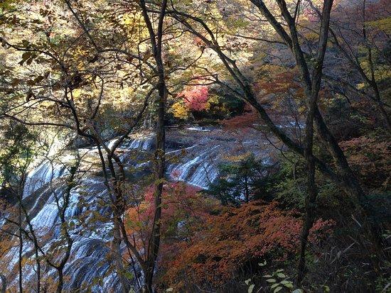 Namase Waterfall : 生瀬の滝へ行くまでの袋田の滝