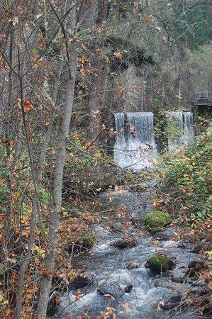 Ashland, Oregón: pond dam at the far end of the park