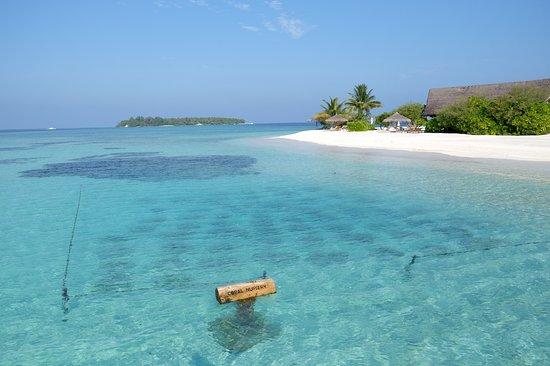 COMO Cocoa Island, The Maldives Photo