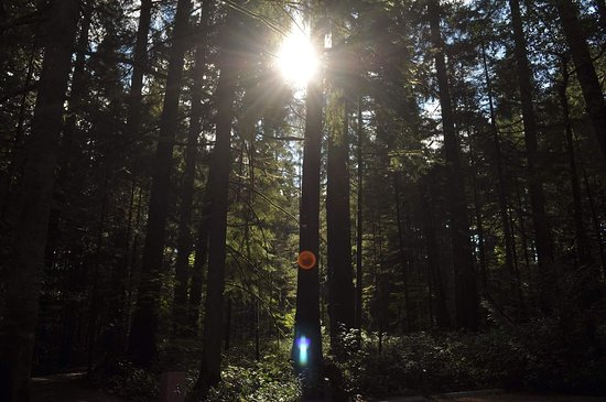 Langford, Canada: Goldstream Provincial Park