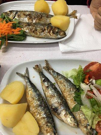 Casa Da India 1 2 Serving Of Makarel And Sardines